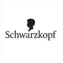 ZENGER Industrie-Service GmbH - Logo Schwarzkopf